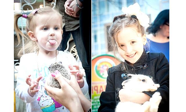 Безкоштовний пухнастий зоопарк відкриється на вихідних: