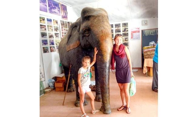 Бізнес на слонячому посліді: Або навіть ось такий слоніще, теж повністю зроблені з Какаші-паперу) Коротше, мораль така: можна і з гівна