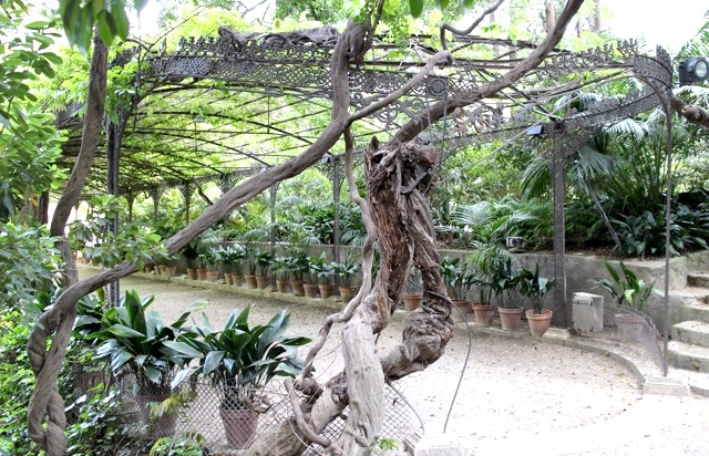 Ботанічний сад Малаги: Галерейка з чудовою чавунною решіткою.