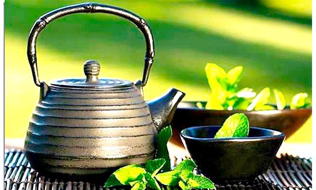 Дев'ять напоїв, необхідних для здоров'я: Одним з кращих заспокійливих і розслаблюючих напоїв є чай з м'яти. Він знімає втому, тонізує, зміцнює сон і нормалізує травлення.