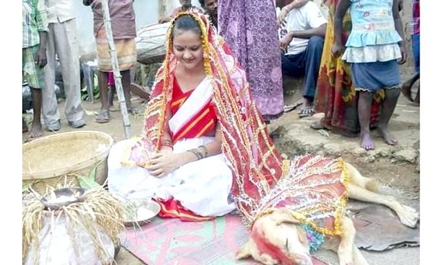 Дівчина з Індії вийшла заміж за собаку: На проведенні церемонії наполіг сільський рада, щоб позбавити дівчину від злих чар, які нібито загрожують не тільки їй, але і