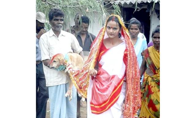 Дівчина з Індії вийшла заміж за собаку: Вийти заміж за чоловіка Мунда зможе через кілька місяців, а до цього моменту їй належить всіляко піклуватися про домашнього вихованця.