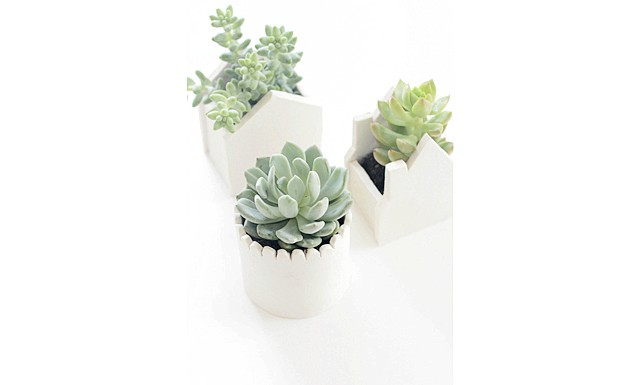 Глиняні горщики для квітів своїми руками: