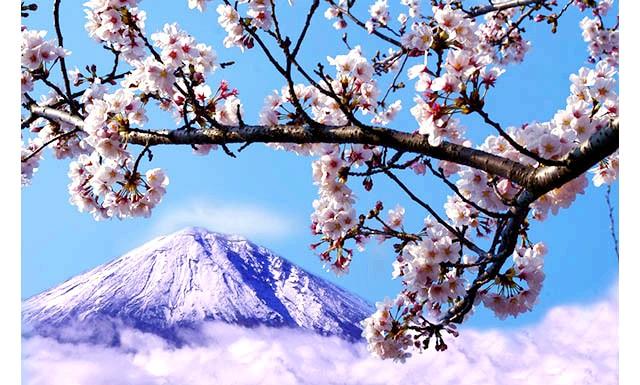 Гора Фудзі стане платною: Квиток на Фудзі обійдеться в одну тисячу йен, це близько 10 доларів, але оплата поки буде на добровільній основі. Дане рішення було