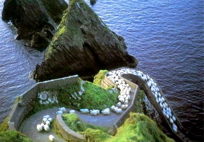Ірландія - рай для мандрівників: [i] Сходження в Дингл [/ i]