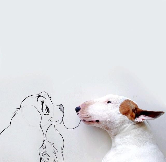Як бультер'єр став музою для господаря: Побачити інші знімки Рафаеля і Джиммі можна в [url = http: //instagram.com/rafaelmantesso] Instagram [/ url]. До слова сказати, тут ви знайдете багато інших авторських робіт художника,