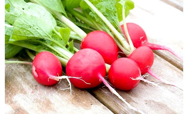 Як отримати хороший урожай редиски ?: Редис - культура дуже вимоглива до умов вирощування. Йому потрібне світло з ранку і до вечора, якщо ця умова не