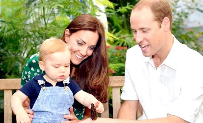 Кейт Міддлтон і принц Вільям розкрили стать майбутнього малюка: За даними британських ЗМІ, пара чекає дівчинку. А це означає, що у маленького принца Джорджа з'явиться сестричка. Герцогиня Кембриджська почуває
