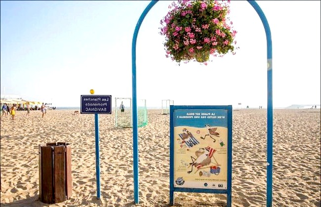 Улюблений пляж світової кінобогеми: Всюди на пляжі можна побачити ось такі арки, живі квіти та різні кумедні плакати.