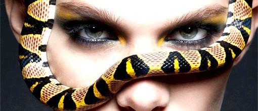 Макіяж для новорічної ночі: Брови: холоднокровний погляд Природно, брови відіграють важливу роль в будь-якому макіяжі. І новорічний make-up 2013 - не виняток. По-перше,