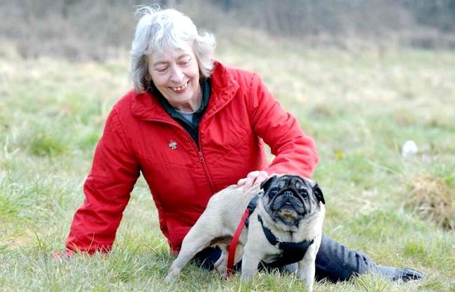 Мопс врятував господиню від раку: 57-річна Меріан Купер з Бірмінгема запідозрила щось недобре. Жінка ретельно обстежила груди і дізналася, що у неї ракова пухлина. «Вона
