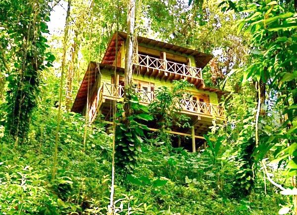 Незвичайні карибські курорти: Kanopi House, ЯмайкаНа іншій стороні Ямайки, замість печер пропонують будиночки на деревах. 5 шикарних будиночків розташовані