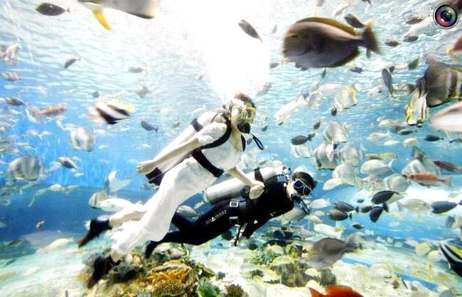Незвичайні весільні фотосесії: Водолази, що зображують нареченого і наречену, виступають в акваріумі на честь настання червня - найпопулярнішого місяці для весіль в Манілі,