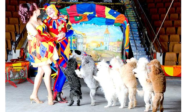 Новорічні канікули та відпочинок з дітьми на рік кози: Новий 2015 в цирку запам'ятається калейдоскопом яскравих фарб. Навіть батькам у цирку не буває нудно - це свято сміху