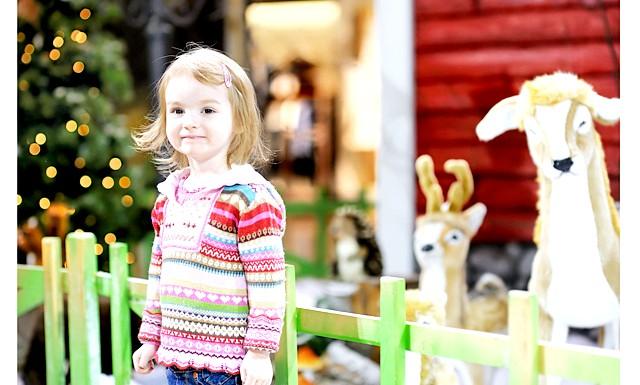 Новорічні канікули та відпочинок з дітьми на рік кози: Самим незабутнім, мабуть, можна вважати поїздку на батьківщину Діда Мороза в Фінляндію. Це буде самий справжній Новий рік, де дитині