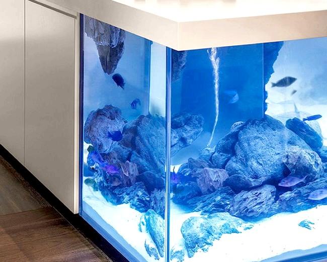 Величезний акваріум, вбудований в кухонний острів: Великий акваріум - ідеальне придбання для любителів океанічних риб. Дизайнер підкреслює важливість того, що ємність не забирає корисної площі будинку,