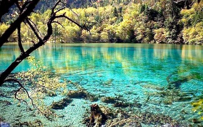 Озеро П'яти квітів - краса, яку рідко зустрінеш: Професор Фан Сіао протягом багатьох років займається дослідженням цих місць. Основним поясненням незамерзання озера є існування на його дні
