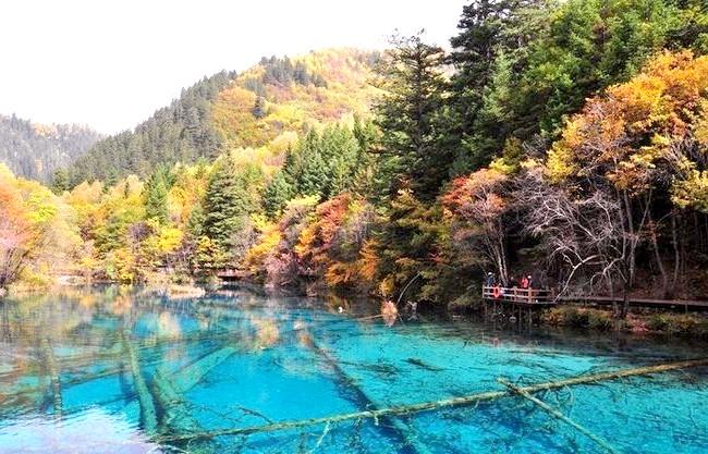Озеро П'яти квітів - краса, яку рідко зустрінеш: Вода озера настільки чиста, що при зануренні в неї можна бачити на 40 метрів. Після багатьох років досліджень вчені знайшли