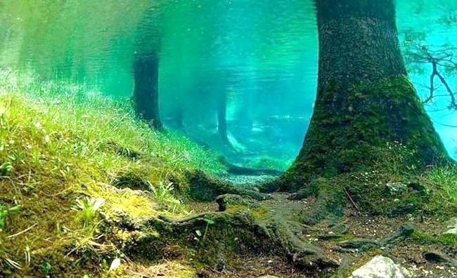 Підводний парк Зеленого озера: Навесні починається танення снігових шапок на Альпах, і утворилася вода стікає вниз, займаючи своє законне місце. Зелене озеро з'являється знову,
