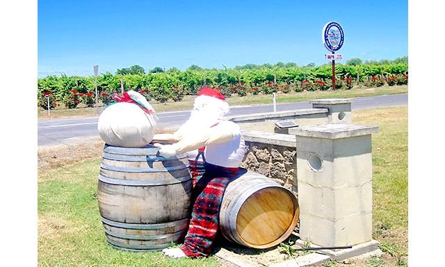 Пригоди австралійських Санта Клаусів: Пропоную вашій увазі підбірку фотографій з нашої останньої поїздки по Південній Австралії, де ми побачили кілька досить незвичайних Санта Клаусів.