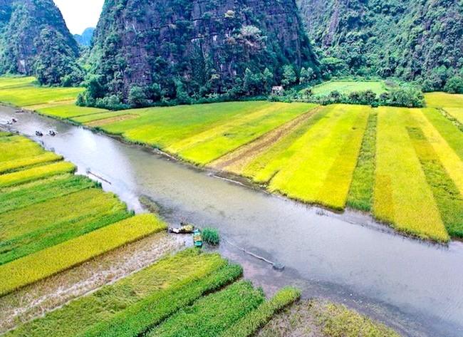 Прогулянка по Там Кок: національний парк Там Кок в перекладі означає «три печери» Зробивши прогулянку по мальовничій річці Ngo Dong, туристи мають можливість