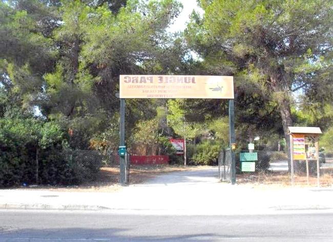 Нехай тобі насниться Пальма де Майорка: Любителям гострих відчуттів можна відмінно повеселитися в парку розваг Jungle Parc, який розташований в межах міста. Там створені мотузкові