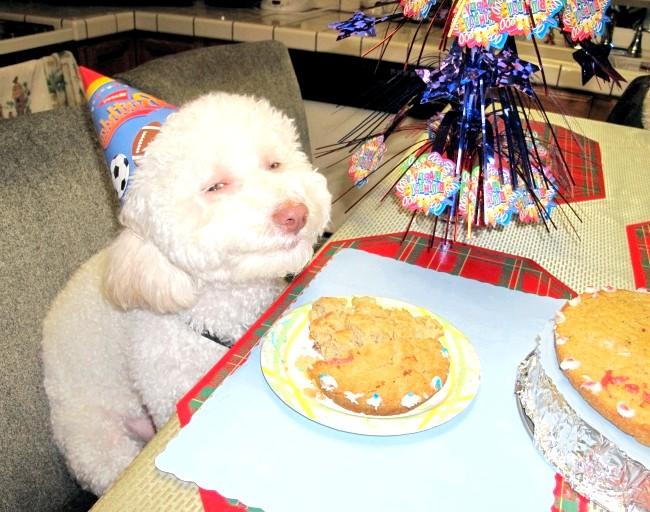Радісні моменти прийнято згадувати сьогодні: Справляти день народження