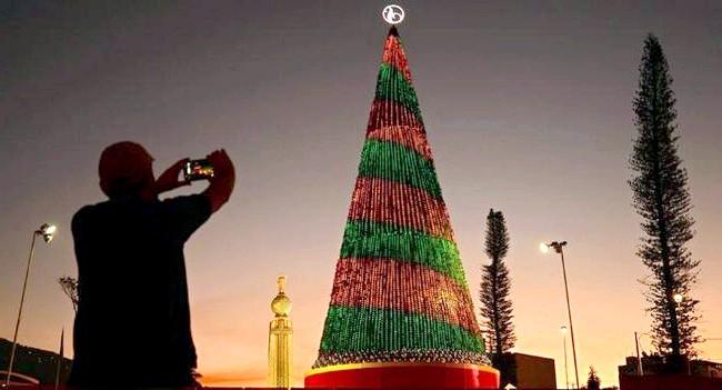 Різдво і Новий рік у різних країнах світу: Сальвадор. Новорічна ялинка у парку Сан-Сальвадору.