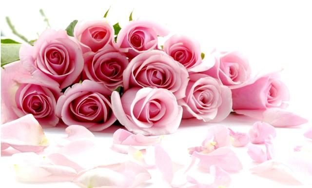 З Днем Народження Еva.Ru !: [i] [center] З Днем Народження, люба «Єва», Розквітай і приймай друзів! Ти давно вже стала Королевою. Нехай горять одинадцять