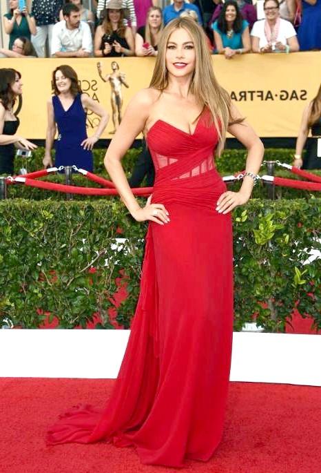SAG Awards 2014: вбрання зірок: Софія Вергара