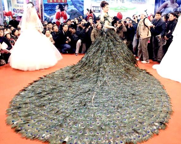 Самі екстравагантні вбрання наречених: Весільна сукня з павиних пір'я.