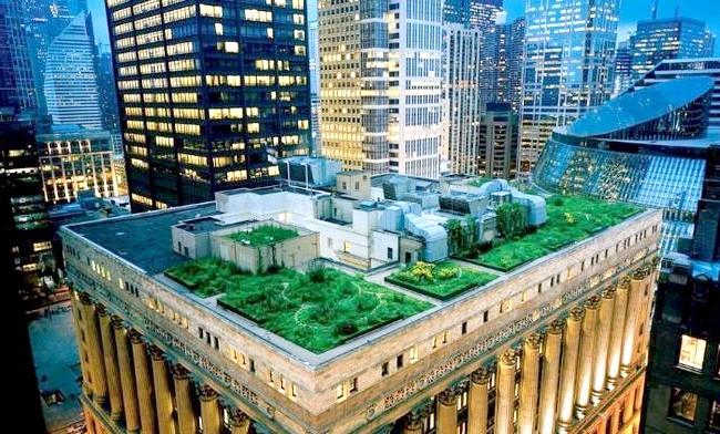 Самі незвичайні даху: Сад, будівля мерії Чикаго