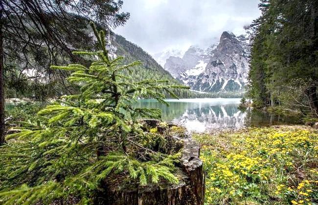 У світі є місце, де час зупинився: Озеро розташоване на висоті 1496 м, максимальна глибина - 36 м. Навколо знаходяться три вершини 2100-2800 м.
