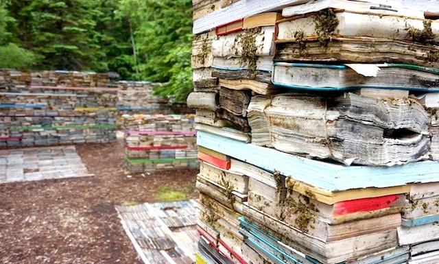 Повернення книг в природу: Це кілька століть тому кожна книга була на вагу золота, ще читали сотні, якщо не тисячі людей. Зараз же випускається