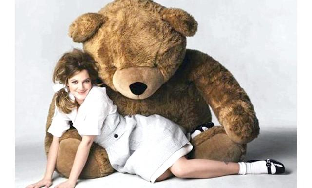 18 найдивніших і безглуздих сексуальних відхилень: ПлюшефіліяА марно комусь мама підсовувала в ліжко ведмедика Пуха, собачку Тяпу і зайчика Степашки. Хлопець узяв