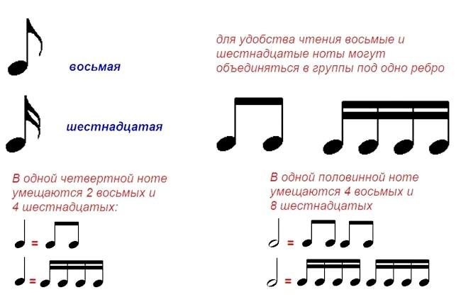 тривалості нот