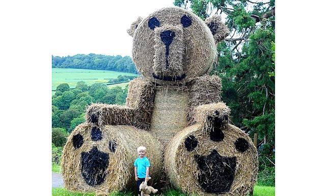 Найбільший у світі ведмедик !: Англійський фермер Фрейзер Бріттон з Глостершира побудував найбільшого у світі іграшкового ведмедика з свіжоскошеної соломи, висотою близько 5,5 метра