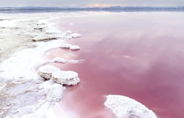 Чудеса природи: рожеві озера і пляжі: Приголомшливе озеро в Торрев'єха, Іспанія, виглядає так, як ніби над його кольором потрудилися в фотошопі, однак це звичайно ж не