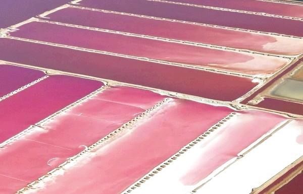 Чудеса природи: рожеві озера і пляжі: Солоне озеро Лагуна Хатт в Австралії, де розводять водорості дуналіелла солоноводная, і використовують в якості харчового барвника.
