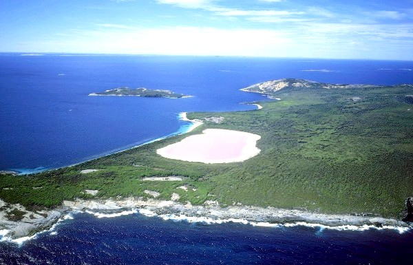 Чудеса природи: рожеві озера і пляжі: Озеро Хіллер, теж у Східній Австралії, примітно незвичайним рожевим кольором, проте до цих пір таємниця незвичайного кольори не розгадана вченими,
