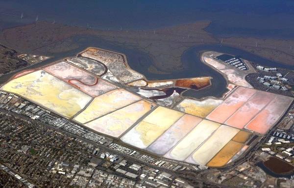 Чудеса природи: рожеві озера і пляжі: Соляні ставки Redwood City, Сан-Франциско, США.