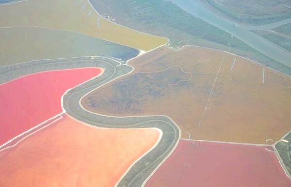 Чудеса природи: рожеві озера і пляжі: Дрібні штучні водойми, створювані з метою виробництва солі з морської води. Вода в таких водоймах може бути різних кольорів в