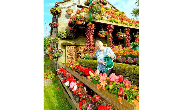 Квітковий дім: Про те, що літня пара Енн і Робін Стрейндж дуже люблять квіти знають всі їхні сусіди. Протягом 26 років