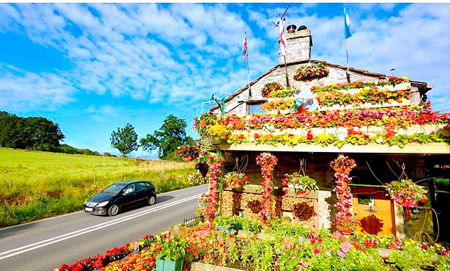 Квітковий дім: