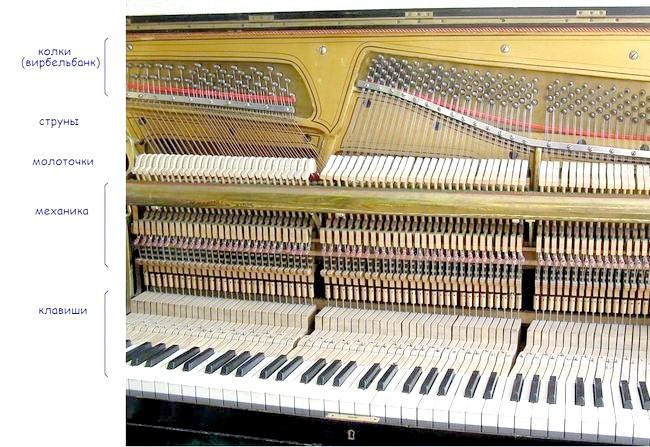 Як вибрати піаніно для дитини