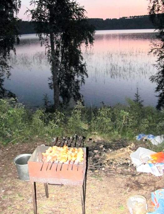 Вихідні на озері Інголь: І хоч їсти на ніч шкідливо - шашлик ніхто не відміняв. Не зміг! :)